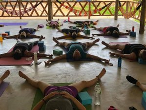 28 Days Fitness and Wellness Camp With Yoga, Meditation, and Muay Thai in Phetchabun, Thailand