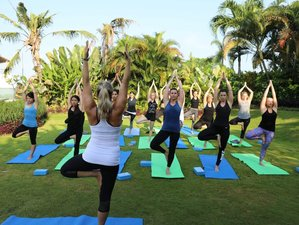 6 Days Asana Immersion Yoga Teacher Training in Bali, Indonesia