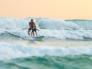 10 Days All Levels Surf Camp in Thulusdhoo, Maldives