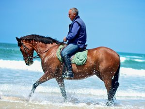 7 Day Mare and Monti Trail Riding Holiday in Sardinia, Italy