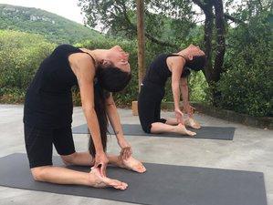 4 Day Weekend Iyengar Yoga Retreat in the Beautiful Epe, Gelderland