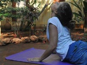 7 Day Volcanic Yoga Retreat in Las Palmas, Canary Islands