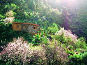 15 Day Private Healing and Wellness Retreat with Yoga for 1 or 2 Guests on La Palma, Canary Islands