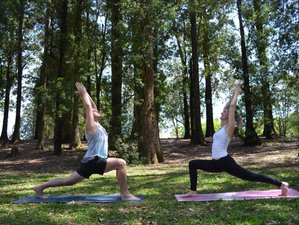 27 Days 200hr Vinyasa Flow Yoga Teacher Training in Brazil