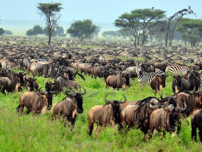 12 Days Honeymoon and Private Safari in Tanzania