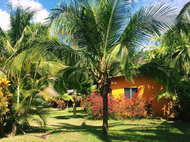 8 Days Beginners Surfcamp in Guanico, Panama