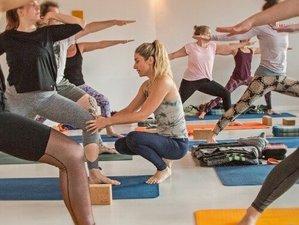 Self-Paced Online 200-Hour Vinyasa, Hatha, Yin, and Restorative Yoga Teacher Training
