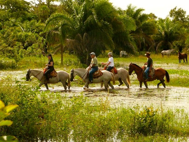 12 Days Paths of Pantanal Yoga Retreat in Brazil