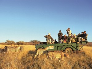 10 Days Skeleton Coast and Etosha National Park Safari in Namibia