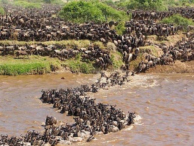 8 Days Luxury Honeymoon Package and Safari in Kenya