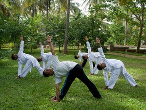 4 Days Wellness Retreat in Bangalore, India