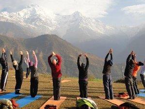 28 días de 200 horas de profesorado de yoga en Nepal
