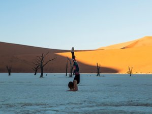 11 Day Namibia Highlights, Yoga and Safari Holiday