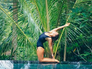 7 Days Divine Body, Healing Food, and Yoga Retreat in Bali, Indonesia