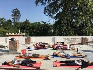 22 Day 200-Hour Yoga Teacher Training in Rishikesh, Uttarakhand