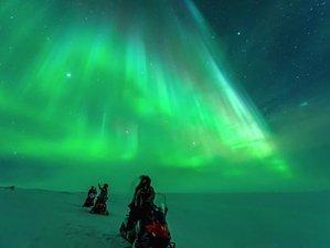 7 Day Arctic Aurora Yoga with Husky and Reindeer Safari in Kirkenes, Norway