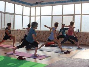 7 Days Blissful Meditation and Yoga Retreat Rishikesh, India