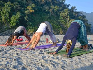 4 Day Yoga Capital Sightseeing Retreat in Rishikesh