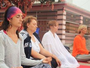 8 Day Tibetan Singing Bowls and Yin Yoga Teacher Training in Rishikesh