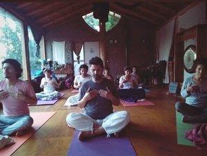 4 días de retiro de yoga kundalini, detox y baño de gong en La Patagonia, Argentina