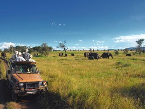 5 Days Mana Pools National Park Safari in Zimbabwe