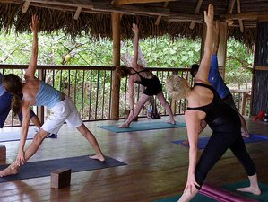 6 Days Unwind and Re-Wild Yoga Retreat in Los Santos, Panama