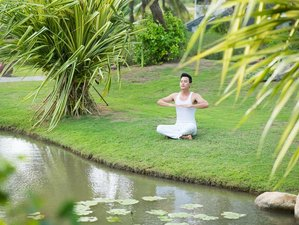 16 Days Psych-Informed Yoga Teacher Training in Florida