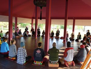 8 Days Mindfulness Meditation and Yoga Retreat in Thailand