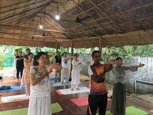 14 Day Ayurveda, Rejuvenation, and Yoga Retreat in Kerala