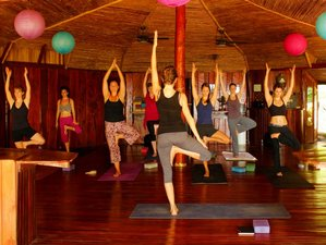 7 Days Surf & Yoga Retreat in Montezuma, Costa Rica