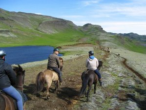 2 Day From Geysers to Mountain Horse Riding Tour, Iceland
