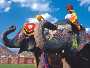 10 Days Culture and Culinary Tours in India