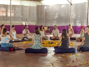 21 Days 200-hour Intensive Yoga Teacher Training in UK