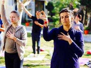 24 Days 200-Hour Sattva Yoga Teacher Training in India