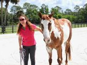 4 Day Compassionate Leadership Equine-Assisted Wellness Retreat in Loxahatchee Groves, Florida