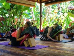 3 Days 20-hour Restorative Yoga Teacher Training in Nusa Lembongan, Bali