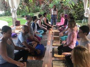 12 Tage 100-Stunden Yin Yogalehrer Ausbildung, Funktionelle Anatomie und Chinesische Medizin in Ubud, Bali