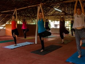28 Days 300-Hour Yoga Teacher Training in Kerala, India