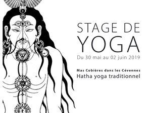 Goûtez au sourire de Bouddha - hatha yoga traditionnel - 3 jours dans les Cévennes, France