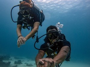 3 Day Level 1 Open Water Diving and Indulge in the Beauty of the Aquatic World of Kata Beach, Phuket