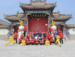 3 Month Shaolin, Sanda, Baji, Wing Chun, Tai Chi and Qigong in Siping, Jilin
