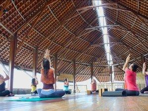 7 días retiro de yoga para ti en Bali, Indonesia