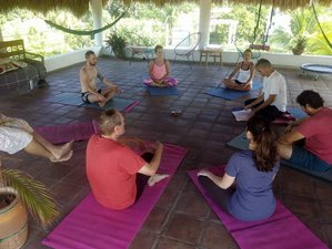 15 Days Intensive Meditation Retreat in Mexico