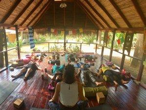 22 Day 200-Hour Restorative and Vinyasa Yoga Teacher Training in Cabuya, Puntarenas