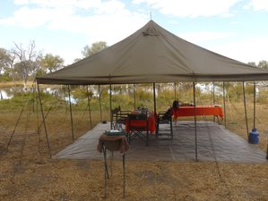 10-Daagse All-Inclusive Safari in Botswana