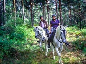 4 Day Long Weekend Horse Ride in the National Park Sierra del Guadarrama near Madrid