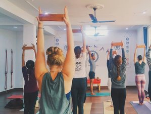 28 Days 200-Hour Hatha Yoga Teacher Training Course in Rishikesh, India