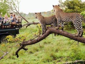 8 Days Private Safari Tour in Kenya