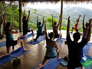 6 Days Yoga Retreat to Find Freedom at the Rainforest in Costa Rica