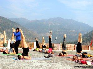 14 Days 100-Hour Mindfulness Yoga Teacher Training in Rishikesh, India